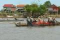 Cambodia Protects Floodplain Grasslands Sheltering Rare Birds