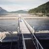 NOAA Seeks Public Input for National Aquaculture Policy