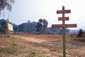 World's Largest Tiger Reserve Clearcut for Plantations
