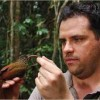 1,200 New Amazon Species Discovered: Mammals, Birds, Fish, Plants