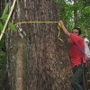 Forest NGOs in Guatemala, Nepal Share UNEP Sasakawa Prize