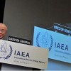IAEA Chief Suggests Surprise Nuclear Power Plant Inspections