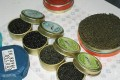 Danube River Sturgeons Victims of Illegal Caviar Trade