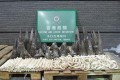 Hong Kong Customs Seizes Rhino Horns, Ivory Worth Millions
