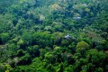 UN Climate Forest Conservation Spawns 'Carbon Piracy' in Peru
