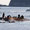 Sea Shepherd's Cove Guardian Crew Raided by Japanese Police
