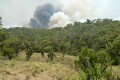 Kenya Contains Arson Fires in Parks, Nabs Wildlife Poachers