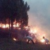 Fire Ruins Forests in Kashmir