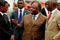 Gabon's President Burns Ivory to Combat Elephant Poaching