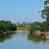 Florida's Everglades Enjoys a $960 Million Dollar Win-Win
