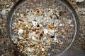 Hong Kong Probes Liability for Plastic Pellet Spill