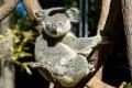 Australia's Unique Species Face 'Unstoppable' Climate Danger