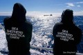 U.S. Supreme Court Denies Sea Shepherd Appeal