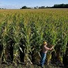 U.S. Senate Bars GMO Labels as March Against Monsanto Revs Up