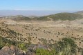 Afghanistan's Forest Cover Illegally Stripped Away