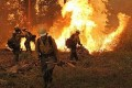 Rim Fire Suppression Costs Exceed $100 million