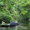 Ecuadorean Voters May Decide Fate of Yasuni National Park