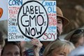 GMO Labeling a Hot Ballot Fight in Washington State