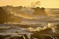 Acidifying Oceans Alarm Hundreds of Scientists
