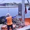 Thai Tanker Sinks, Spilling Oily Sludge