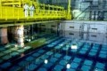 New Micro-algae Clean Highly Radioactive Waste