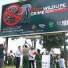 Malawi Clamps Down on Ivory Trafficking