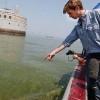 Toxic Algae Contaminates Toledo's Water