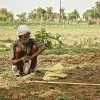 Climate Change Threatens South Asian Economy, Bank Warns