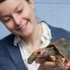 Tortoises Learn Touchscreen Technology