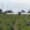 First Global Pesticide Runoff Map Shows Streams At Risk