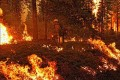 Fierce Wildfires Force Thousands of Californians to Flee