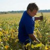 Too Toxic: EPA Rejects Dow's Herbicide Enlist Duo