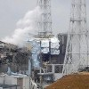 Fukushima Ecosystem Still Poisoned Five Years Later
