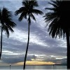 Fiji Wins: Pacific Island Region Changes the Game