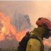 'Extreme' Chilean Wildfires Worst in Decades