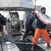 Feared Pebble Mine Again Threatens Bristol Bay Salmon