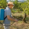 EPA to Implement Pesticide Safeguards After States Sue