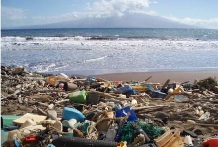 Microplastics Problem Extends Beyond the Sea