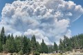 Rampaging Fires Send U.S. Western Forests Up in Smoke