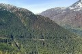 Trump Opens Alaska's Tongass National Forest to Logging