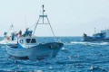 EU Parliament Uses New Powers to End Overfishing