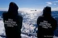 U.S. Supreme Court Denies Sea Shepherd Appeal