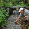 Over Half U.S. River and Stream Miles in Poor Condition