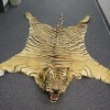 Operation Wild Web Nets Six for Online Wildlife Trafficking