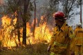 Australian Army Started Bushfire Blazes, Climate Also Blamed