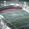 Climate Change Puts Red Sox' Fenway Park at Risk