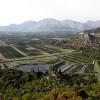 Crops Eating Into World's Natural Land Base