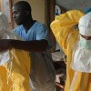 Ebola Jumps Around the World