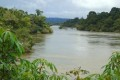 Brazilian Judge Sides With Tribe Over Land Threatened by Dams