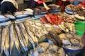 Taiwan Warned of LoomingFishery Collapse